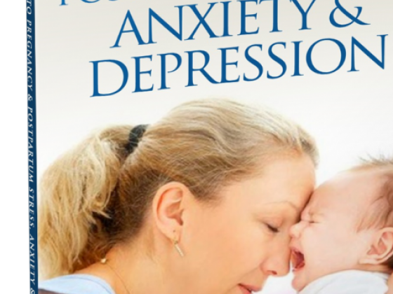 The Guide to Pregnancy & Postpartum Stress, Anxiety & Depression